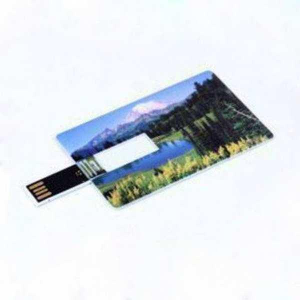 Флешка-визитка, Модель 1